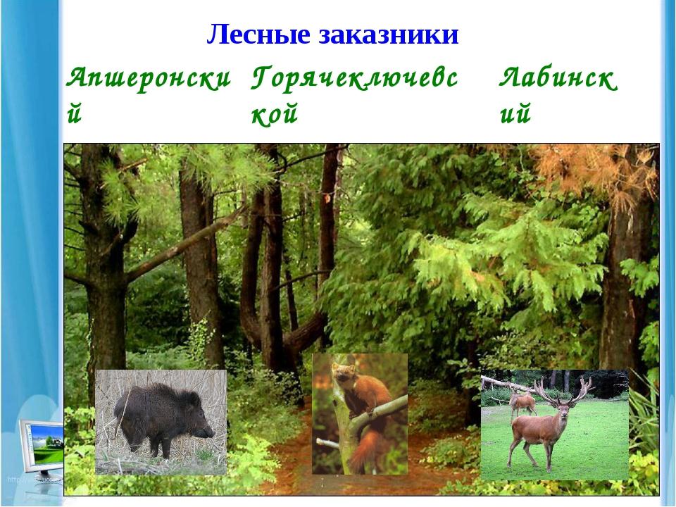 Лесные заказники Апшеронский Горячеключевской Лабинский