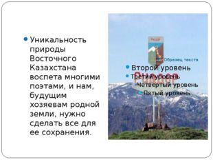 Уникальность природы Восточного Казахстана воспета многими поэтами, и нам, б
