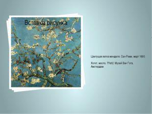 Цветущая ветка миндаля. Сан-Реми, март 1890. Холст, масло, 77х92. Музей Ван Г