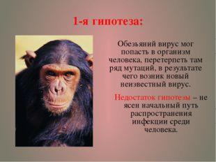 1-я гипотеза: Обезьяний вирус мог попасть в организм человека, перетерпеть та