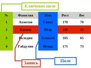 Запись Поле Ключевое поле №ФамилияИмяРостВес 1АхметовСанат17070 2Бар