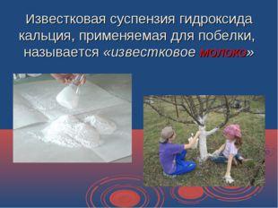 Известковая суспензия гидроксида кальция, применяемая для побелки, называется