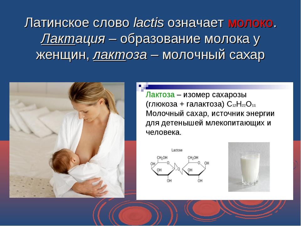 Латинское слово lactis означает молоко. Лактация – образование молока у женщи...