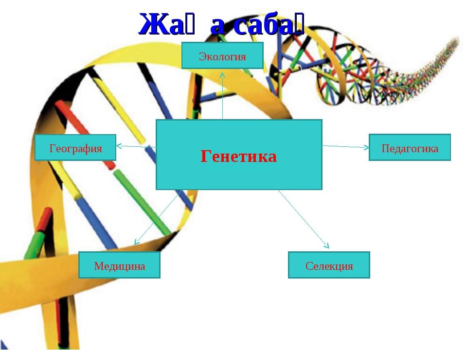 Генетика Педагогика Экология География Медицина Селекция Жаңа сабақ