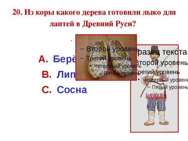 20. Из коры какого дерева готовили лыко для лаптей в Древний Руси? Берёза Лип...