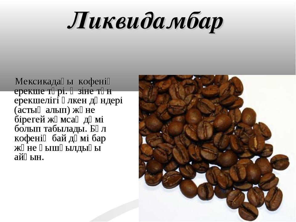 Ликвидамбар Мексикадағы кофенің ерекше түрі. Өзіне тән ерекшелігі үлкен дәнде...
