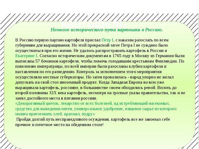 Что мы узнали про картофель Немного исторического пути картошки в Россию. В...