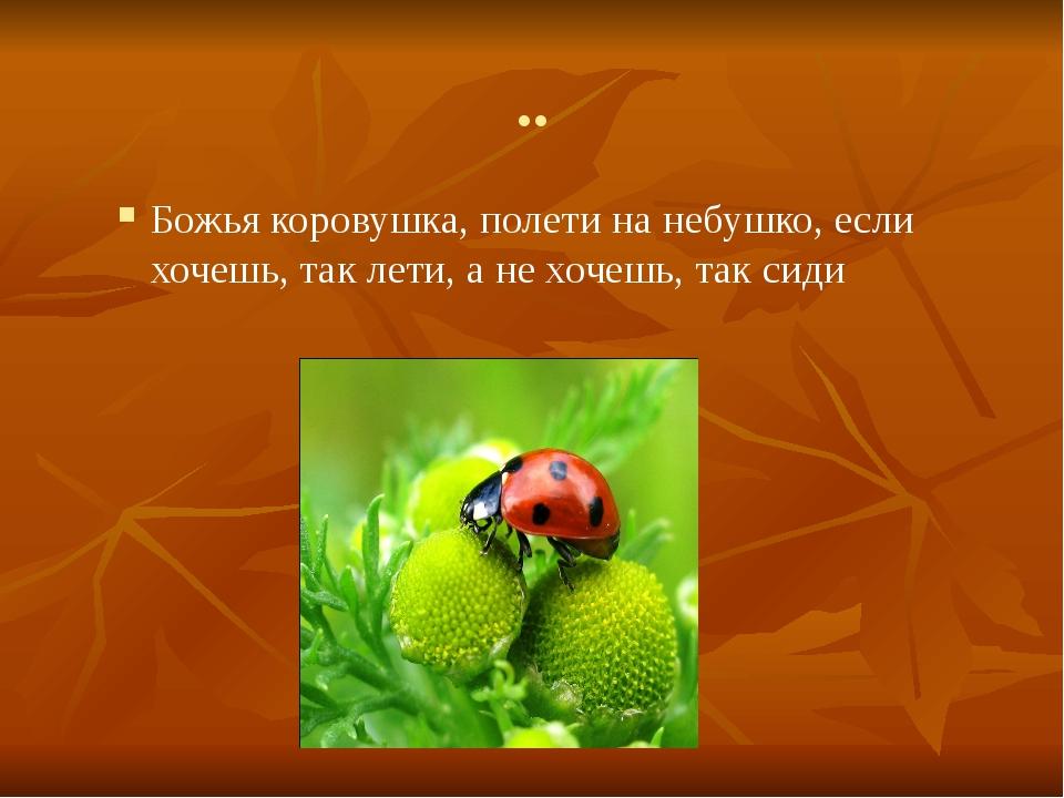 .. Божья коровушка, полети на небушко, если хочешь, так лети, а не хочешь, та...