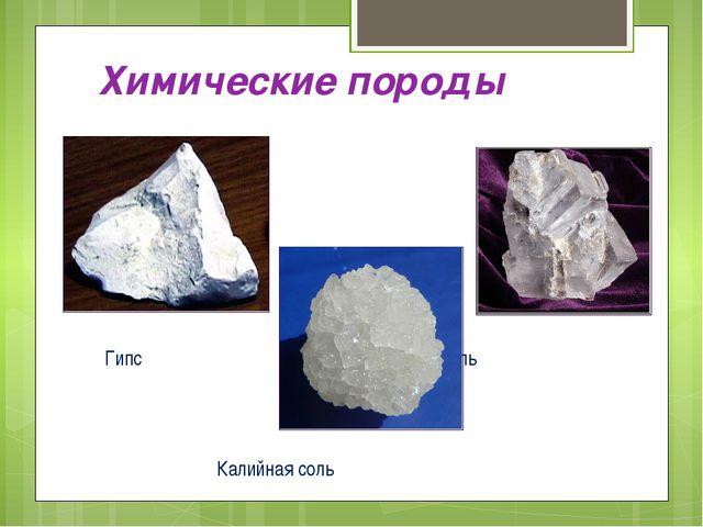 Химические породы Гипс Каменная соль Калийная соль