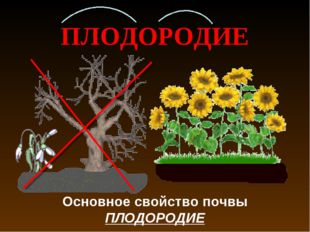 ПЛОДОРОДИЕ Основное свойство почвы ПЛОДОРОДИЕ