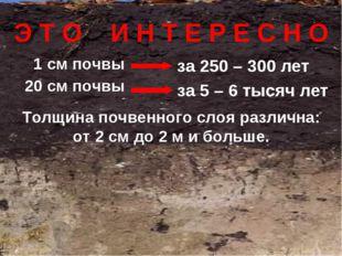 1 см почвы 20 см почвы за 250 – 300 лет за 5 – 6 тысяч лет Э Т О И Н Т Е Р Е