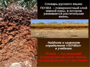 Словарь русского языка: ПОЧВА – поверхностный слой земной коры, в котором раз