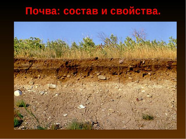 Почва: состав и свойства.