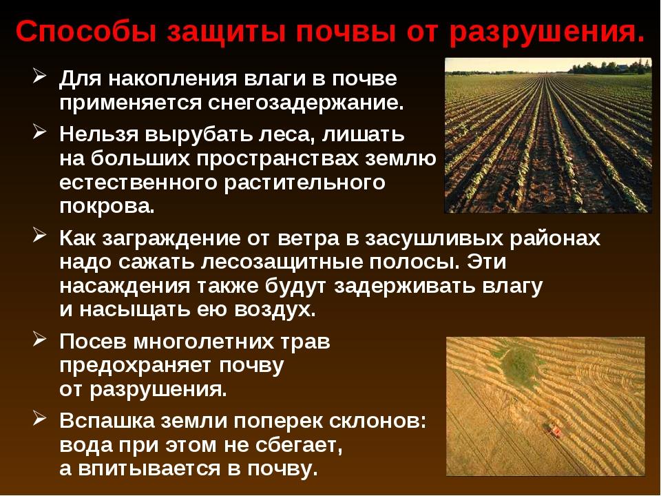 Для накопления влаги в почве применяется снегозадержание. Нельзя вырубать лес...