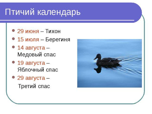 Птичий календарь 29 июня – Тихон 15 июля – Берегиня 14 августа – Медовый спас...