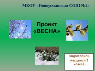 Проект «ВЕСНА» Подготовили учащиеся 3 класса МКОУ «Новоусманская СОШ №2»