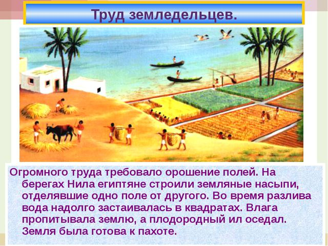 * Огромного труда требовало орошение полей. На берегах Нила египтяне строили...