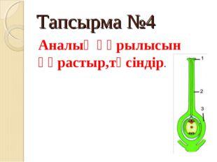 Тапсырма №4 Аналық құрылысын құрастыр,түсіндір.