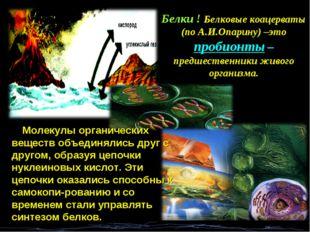 Белки ! Белковые коацерваты (по А.И.Опарину) –это пробионты – предшественники