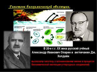 Гипотеза биохимической эволюции. В 20-е г.г. XX века русский учёный Александ