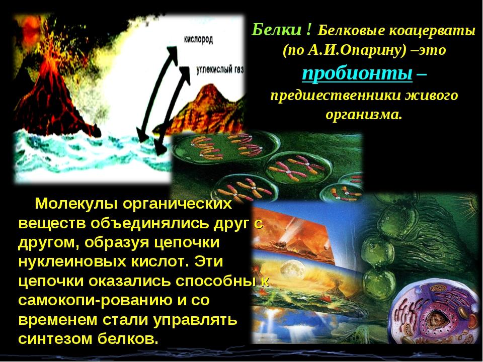 Белки ! Белковые коацерваты (по А.И.Опарину) –это пробионты – предшественники...