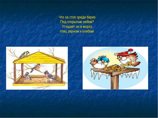 Что за стол среди берез Под открытым небом? Угощает он в мороз птиц зерном и...