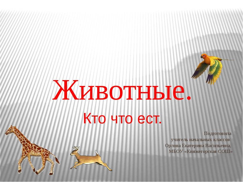 Подготовила учитель начальных классов: Орлова Екатерина Васильевна, МБОУ «Кня...