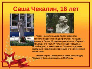 Саша Чекалин, 16 лет Через несколько дней пыток фашисты повесили подростка на