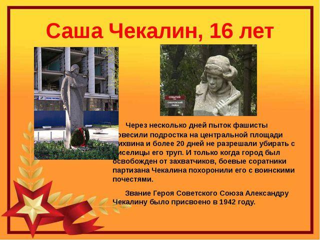 Саша Чекалин, 16 лет Через несколько дней пыток фашисты повесили подростка на...