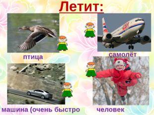 Летит: птица самолёт машина (очень быстро едет) человек (падает)