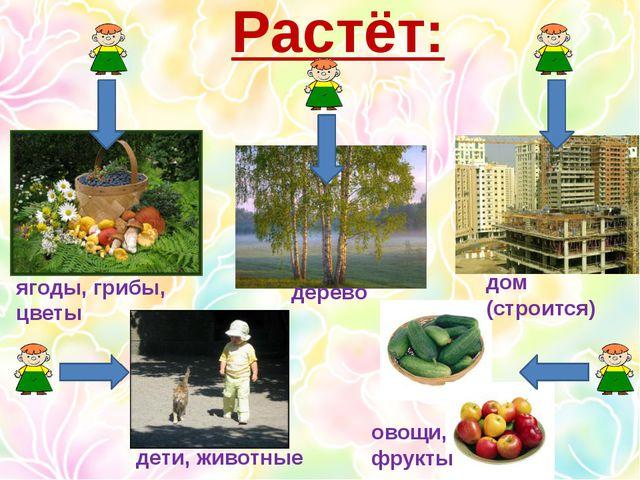 Растёт: ягоды, грибы, цветы дерево дом (строится) дети, животные овощи, фрукты