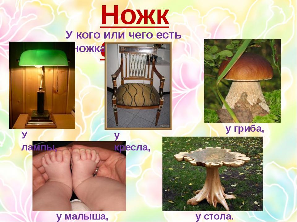 Ножка У кого или чего есть «ножка»? У лампы, у кресла, у гриба, у малыша, у с...