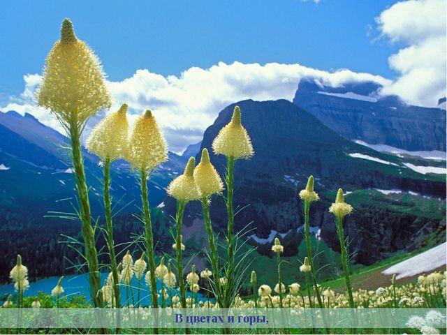 В цветах и горы,