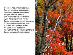 Осенний лес, играя красками, Плетет из кроны древ венки, Своими солнечными ла
