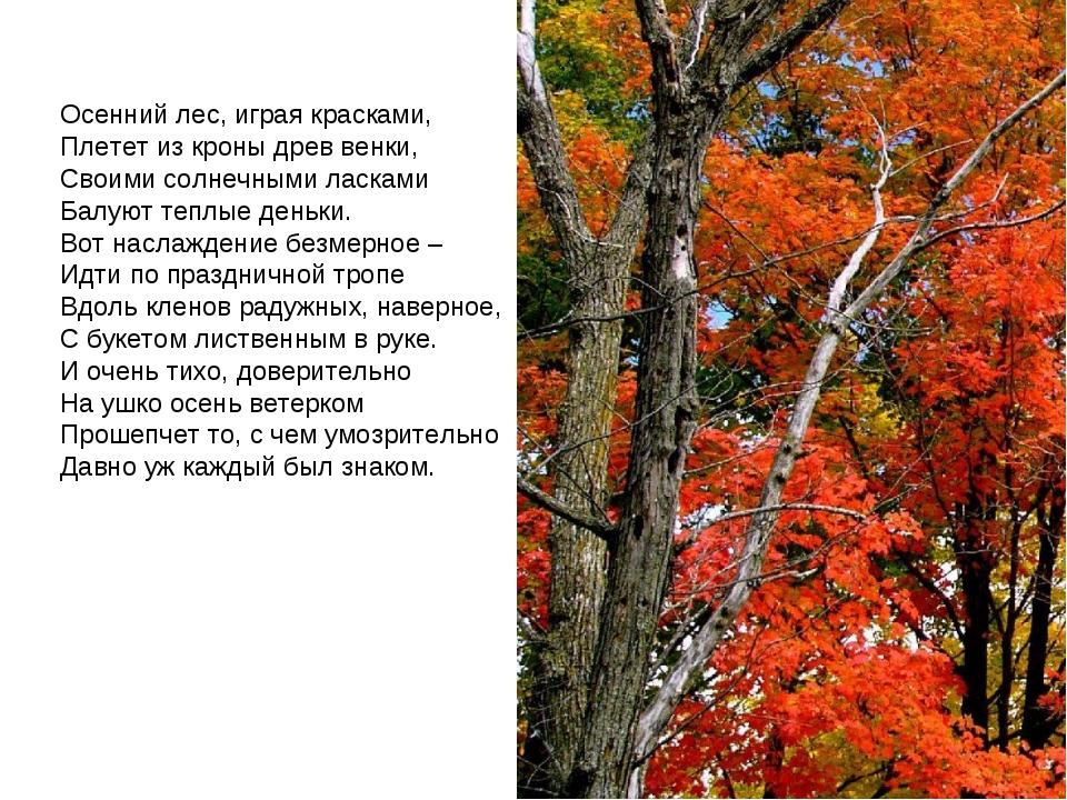 Осенний лес, играя красками, Плетет из кроны древ венки, Своими солнечными ла...