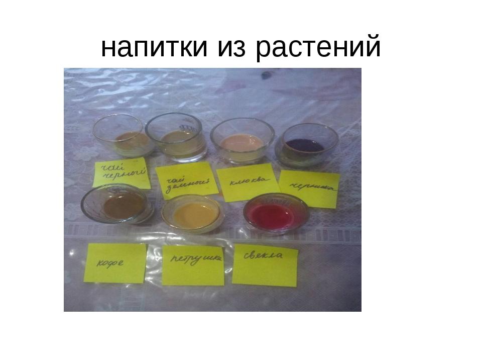 напитки из растений