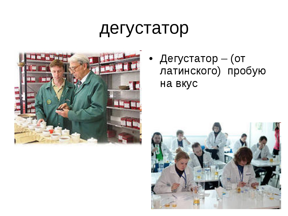 дегустатор Дегустатор – (от латинского) пробую на вкус