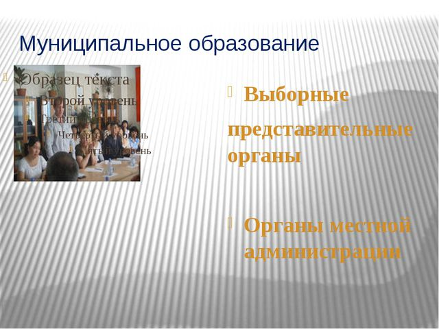 Муниципальное образование Выборные представительные органы Органы местной адм...
