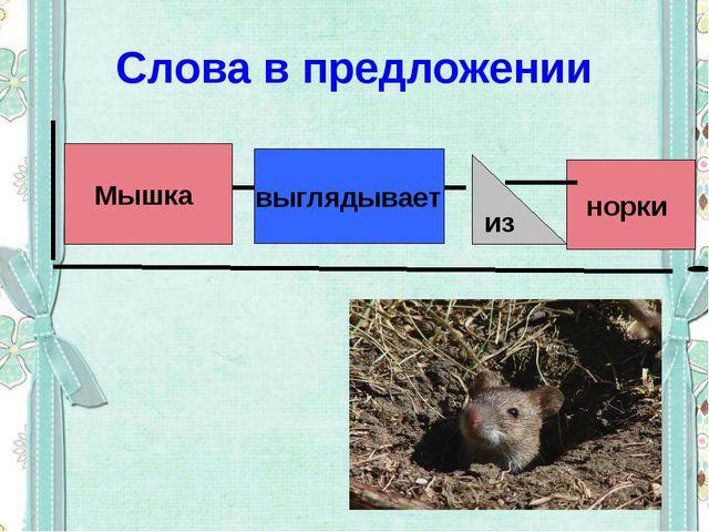 Слова в предложении Мышка выглядывает норки из