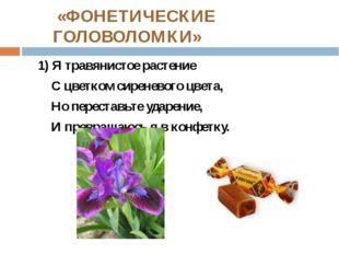 «ФОНЕТИЧЕСКИЕ ГОЛОВОЛОМКИ» 1) Я травянистое растение С цветком сиреневого цв