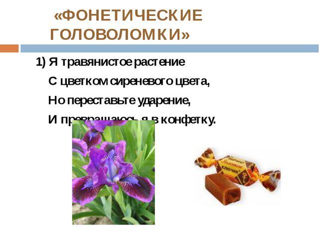 «ФОНЕТИЧЕСКИЕ ГОЛОВОЛОМКИ» 1) Я травянистое растение С цветком сиреневого цв...