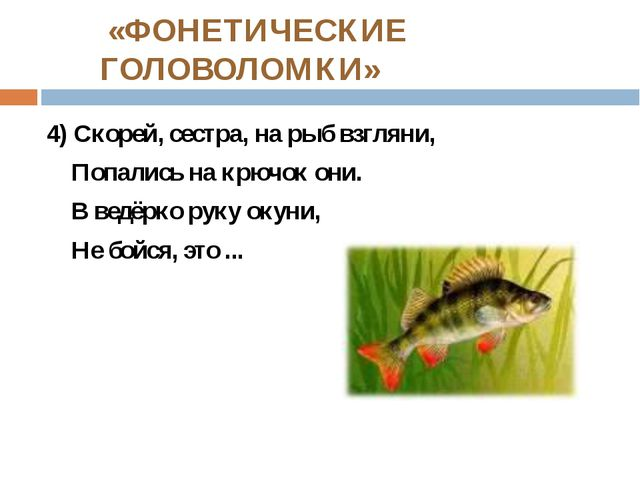 «ФОНЕТИЧЕСКИЕ ГОЛОВОЛОМКИ» 4) Скорей, сестра, на рыб взгляни, Попались на кр...