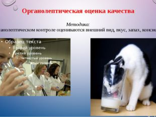 Органолептическая оценка качества Методика: При органолептическом контроле оц