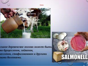 Советы Натуральное деревенское молоко может быть заражено бруцеллезом, лейкоз