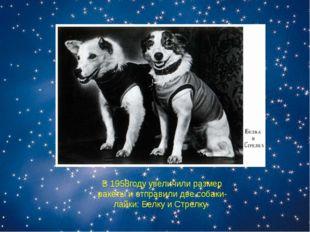 В 1958году увеличили размер ракеты и отправили две собаки-лайки: Белку и Стре