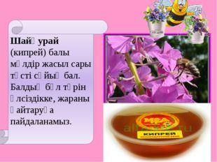 Шайқурай (кипрей) балы мөлдір жасыл сары түсті сұйық бал. Балдың бұл түрін әл