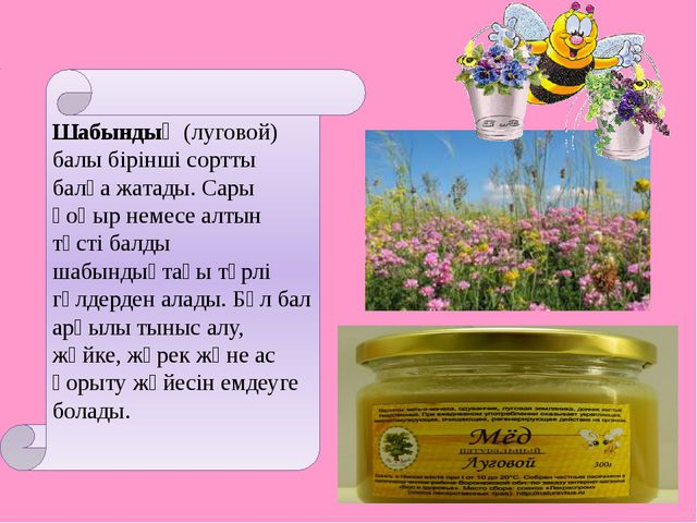 Шабындық (луговой) балы бірінші сортты балға жатады. Сары қоңыр немесе алтын...
