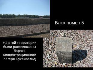 На этой территории были расположены бараки Концентрационного лагеря Бухенваль