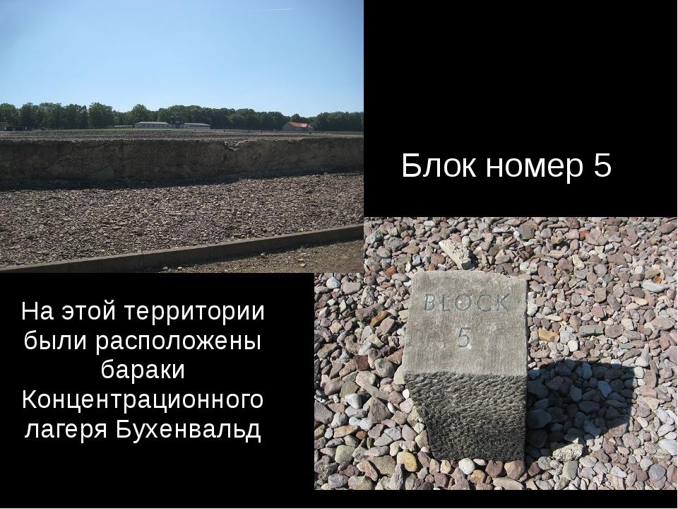 На этой территории были расположены бараки Концентрационного лагеря Бухенваль...