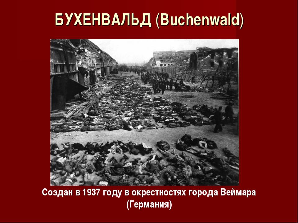 БУХЕНВАЛЬД (Buchenwald) Создан в 1937 году в окрестностях города Веймара (Гер...